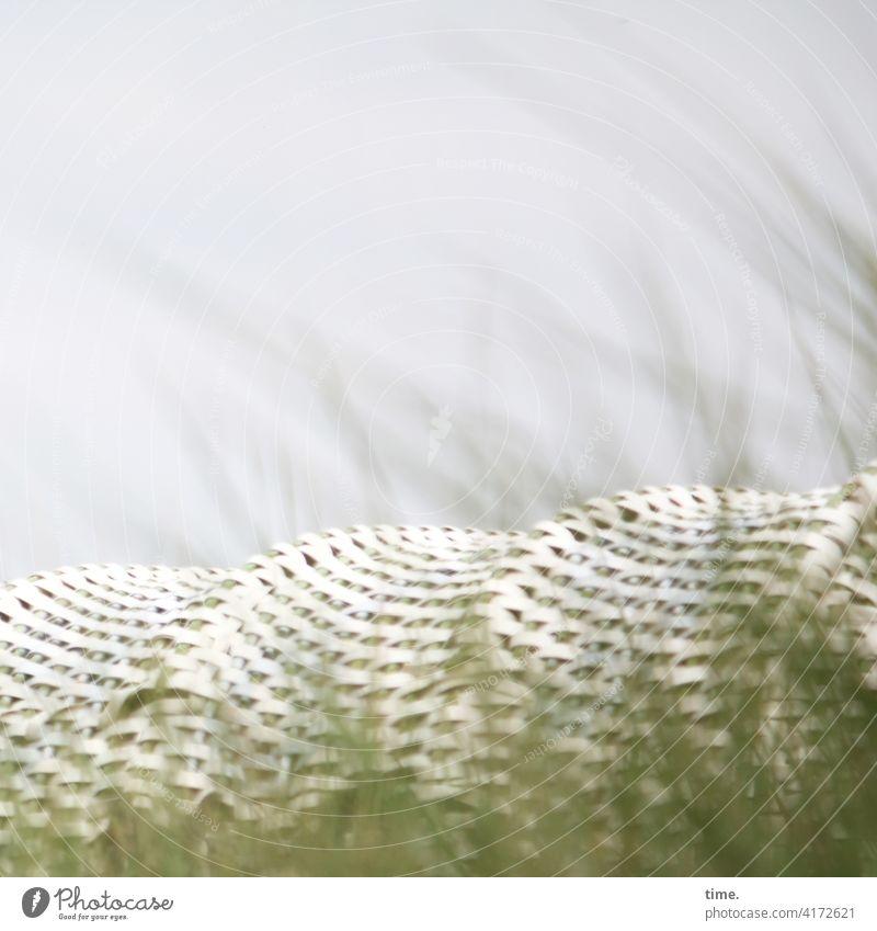 Frühling im Karton strandkorb gras strandhafer himmel geflochten versteckt ruhe rückzug privat