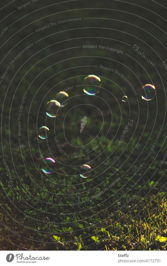 Seifenblasen schmücken den Rasen schweben leicht Leichtigkeit unbeschwert fröhlich Fröhlichkeit Unbeschwertheit sommerlich Lichtreflexe Lichteinfall Lichtschein
