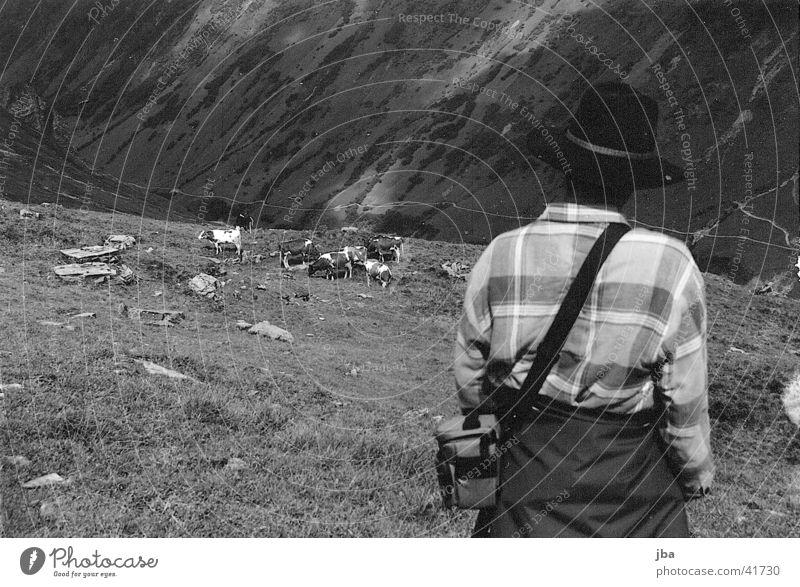 Bergbauer_3 Einsamkeit Berge u. Gebirge Landschaft Landwirt Alm Rind