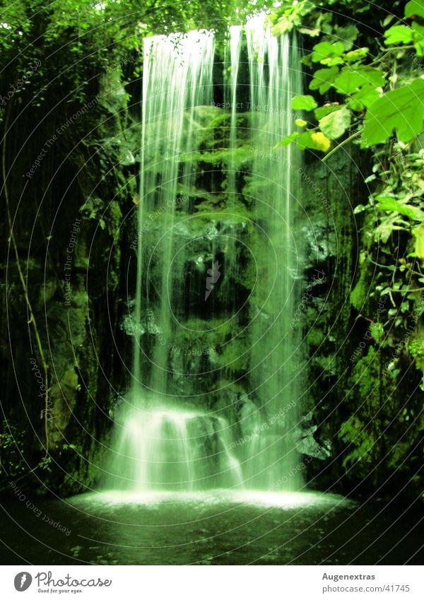 Dschungel grün Urwald Wasserfall