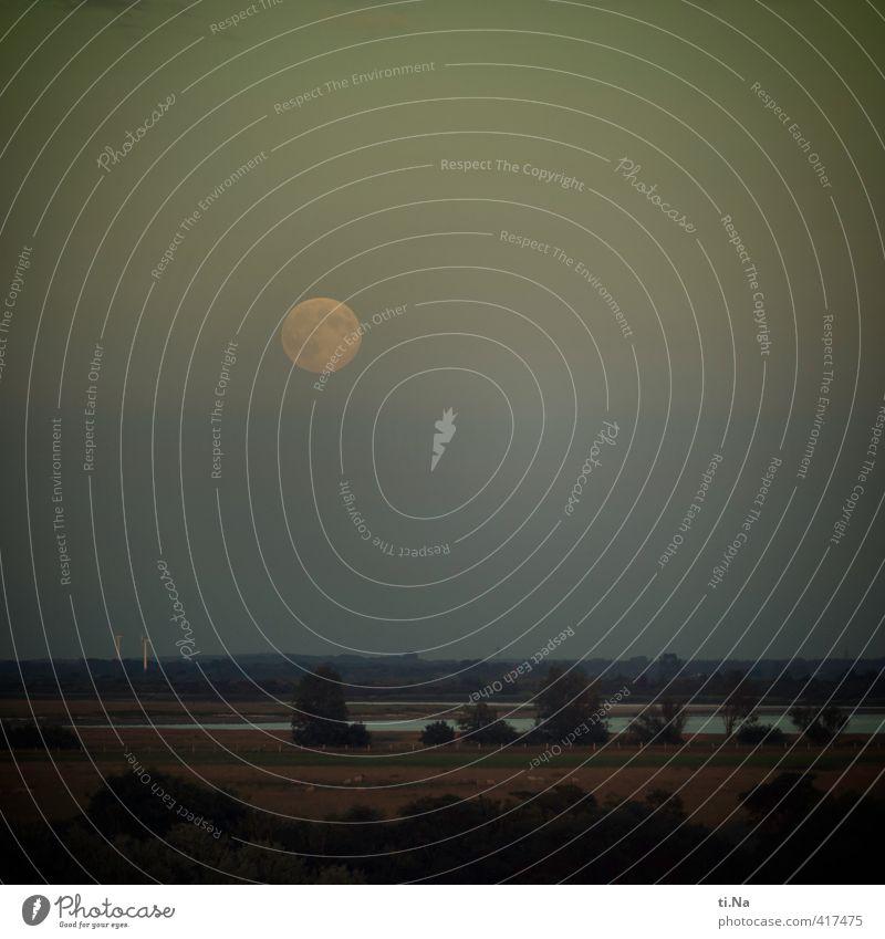 Untermieter | unter dem Vollmond Landschaft Horizont Mond Sommer Schönes Wetter Baum Gras Sträucher Küste Nordsee Deich leuchten Unendlichkeit blau gelb grau