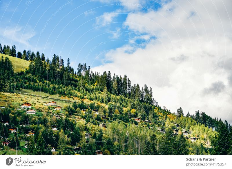Ferienhäuser in den Bergen Schweiz Berge Alpen Urlaub Familienurlaub Chalet Dorf Bergdorf Tourismus alpiner bewaldet grün Bergpanorama Moléson Gryere Ferienhaus