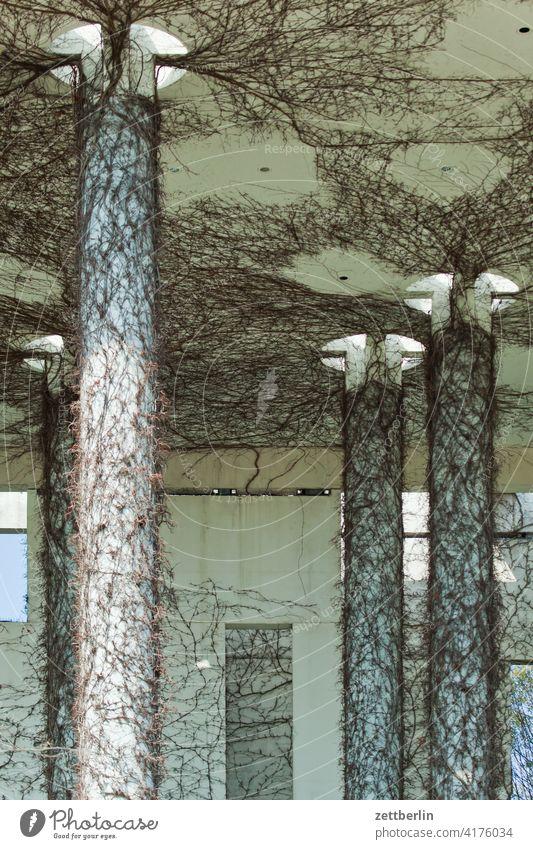 Das Dach des Kanzleramtes architektur berlin bundeskanzleramt büro city deutschland froschperspektive hauptstadt haus innenstadt kanzleramz mitte modern neubau