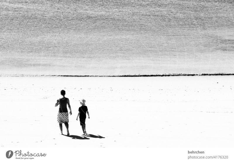 und über uns das meer Schwarzweißfoto Außenaufnahme schön frei Wasser Sand fantastisch träumen genießen Fernweh Sehnsucht Licht Kontrast Sonnenlicht Küste