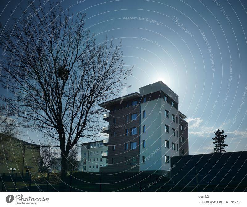 Neue Siedlung Haus Silhouette Gegenlicht eckig modern groß hoch Himmel Wolken Textfreiraum oben Textfreiraum rechts Baum Häuser Architektur Bauwerk Fenster