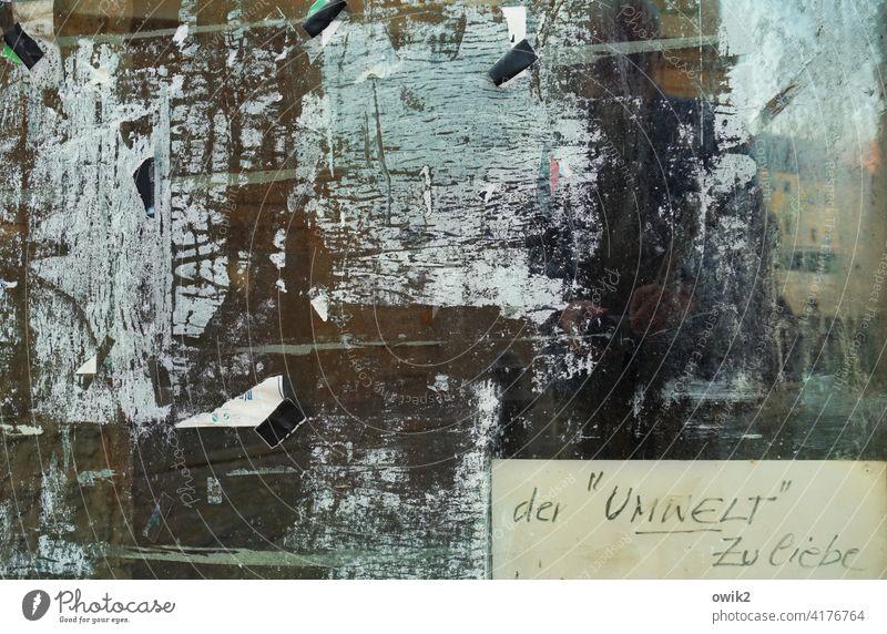 Wandzeitung Fenster Schaufenster Reste trashig Schild Aufschrift Buchstaben zerkratzt dreckig wild durcheinander