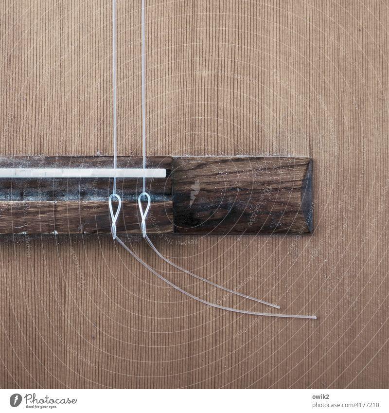 Duoton Musik Gitarre Holz dünn Gitarrensaite Steg nah gespannt Verschwiegenheit Konzertgitarre Knoten Nylonsaiten festgezurrt Maserung Musikinstrument Klang Ton