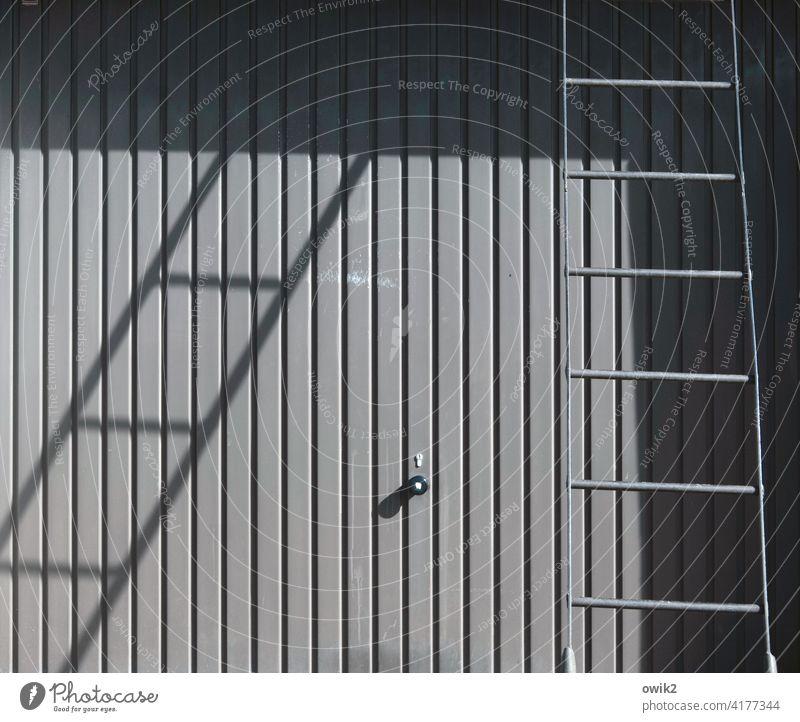Abschlussbericht Tor Garagentor Blech Leiter Außenaufnahme Schwarzweißfoto Detailaufnahme streng Linien Sonnenlicht Schatten einfach sperrig Menschenleer Metall