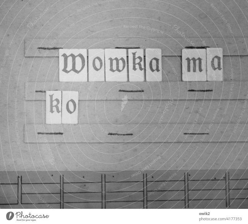 Sorbische Schule Schriftzeichen Präzision Vergangenheit akkurat Nostalgie fein säuberlich historisch Großbuchstabe alt Lateinisches Alphabet slawisch