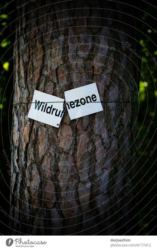 Die gebrochene Wildruh..ezone. Zerbrochenes  Hinweis  Schild an einem Baum. Schilder & Markierungen Hinweisschild Außenaufnahme Schriftzeichen Nahaufnahme