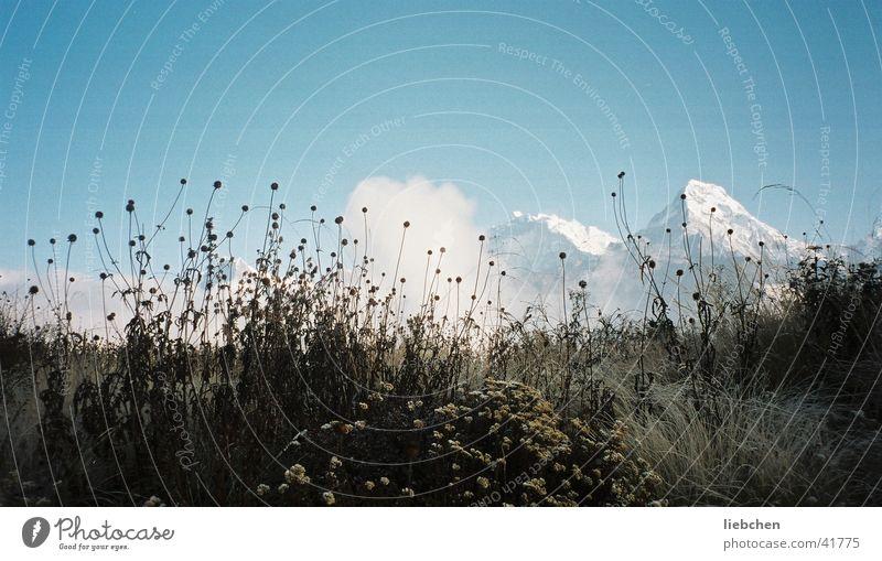 Gras+Berge+ Himmel Berge u. Gebirge Nepal