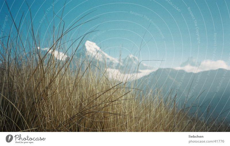 Gras+Berge Schnee Berge u. Gebirge Gipfel Nepal