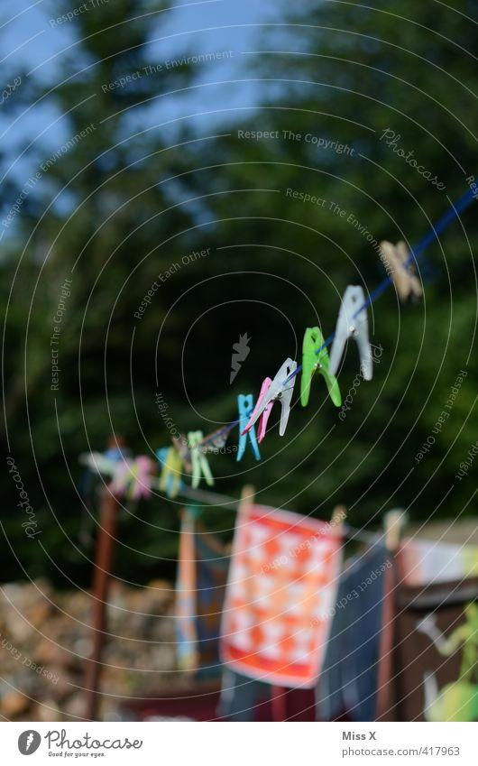 Waschtag Sommer Garten Häusliches Leben Schönes Wetter nass Bekleidung Reinigen Sauberkeit trocken Wäsche waschen hängen Reihe Wäscheleine Reinheit aufhängen
