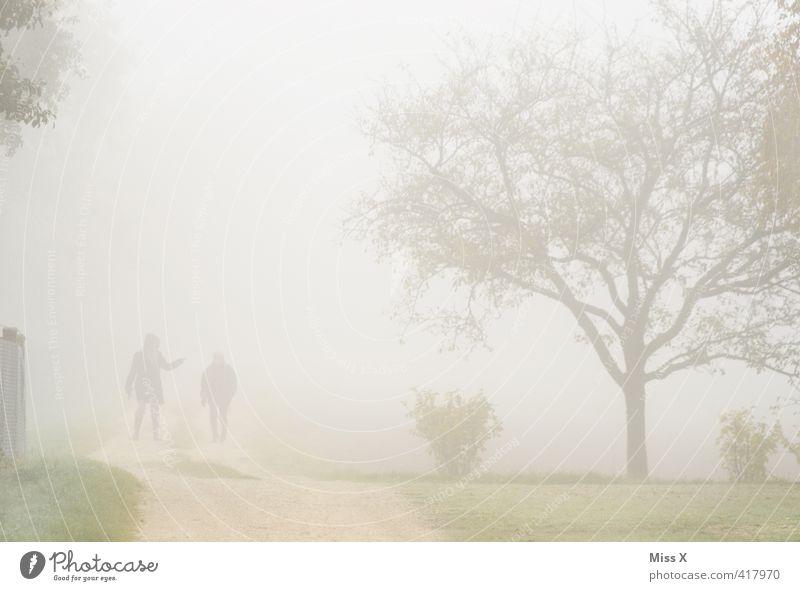 Streit im Nebel Mensch Baum dunkel sprechen Wege & Pfade Paar Garten gehen Freundschaft Stimmung Park Regen Wetter Nebel laufen wandern