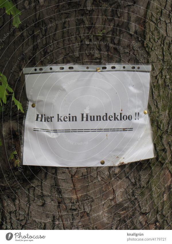 Hier kein Hundeklo! Mitteilung Baum Papier Information Kommunizieren Schriftzeichen Farbfoto Menschenleer Wort Text Buchstaben Typographie Sprache Kommunikation