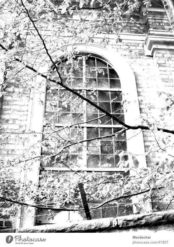 Window Fenster Religion & Glaube Nostalgie unheimlich Gotteshäuser Kirchenfenster Licht & Schatten