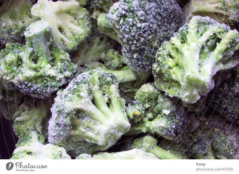 Brokkoli Ernährung Küche Gemüse gefroren Broccoli Tiefkühlkost