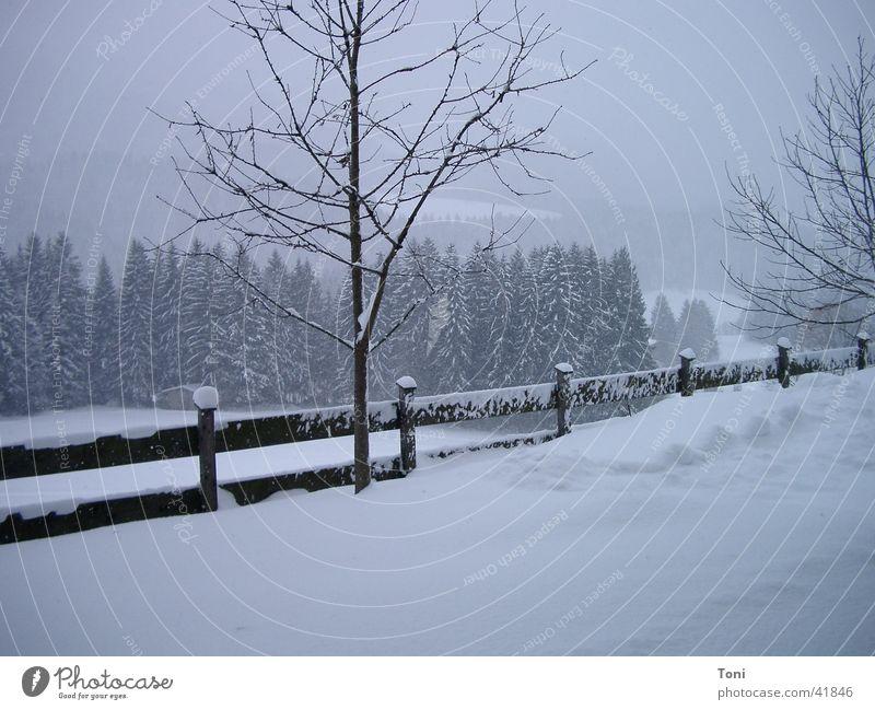 Ellmau Schnee