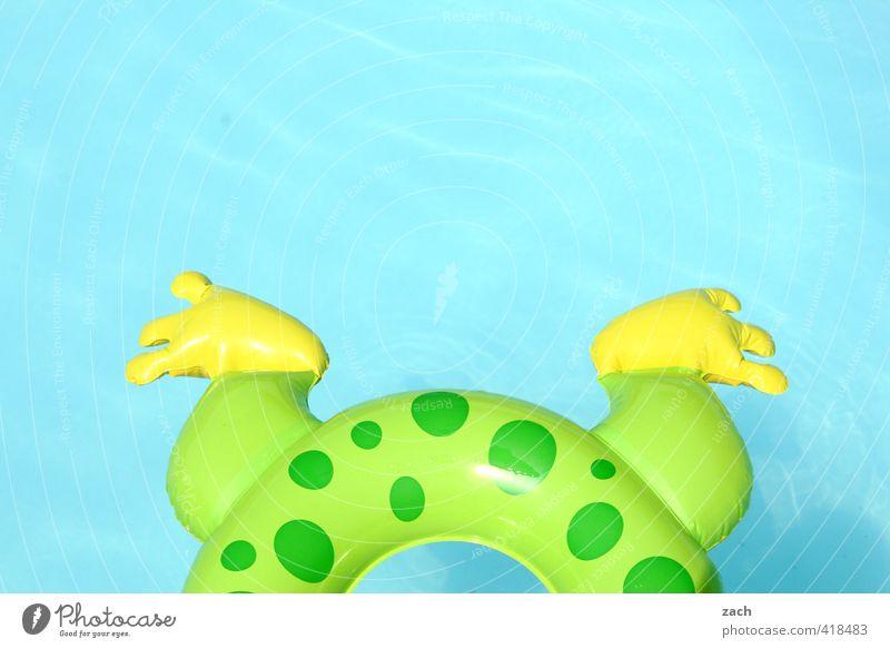 Froschschenkel Ferien & Urlaub & Reisen blau grün Wasser Sommer Erholung Freude Spielen Schwimmen & Baden Beine Fuß Kindheit rund Lebensfreude Schwimmbad