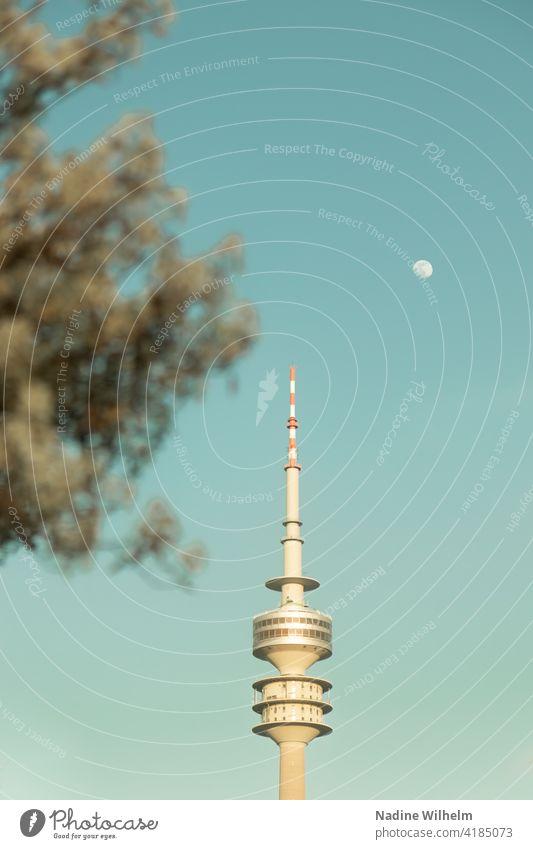 Olympiaturm in München Olympiapark Baum Morgen Hell Außenaufnahme Farbfoto Himmel Architektur Wahrzeichen Park Tag Sehenswürdigkeit Menschenleer Turm Gebäude