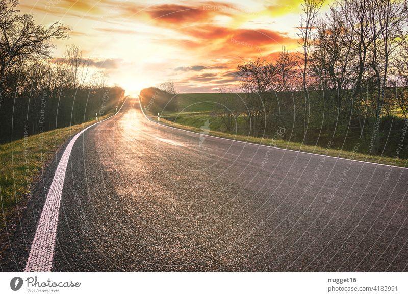 westwärts - Sonnenuntergang am Ende der Straße sonnenuntergang sonnenaufgang Himmel bitumen Linie linien Morgen Sonnenaufgang Abend Natur Baum Licht