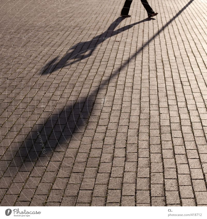 schattenspiel Mensch Frau Erwachsene Straße feminin Wege & Pfade gehen Beine Verkehr laufen Schilder & Markierungen Perspektive Hinweisschild Spaziergang