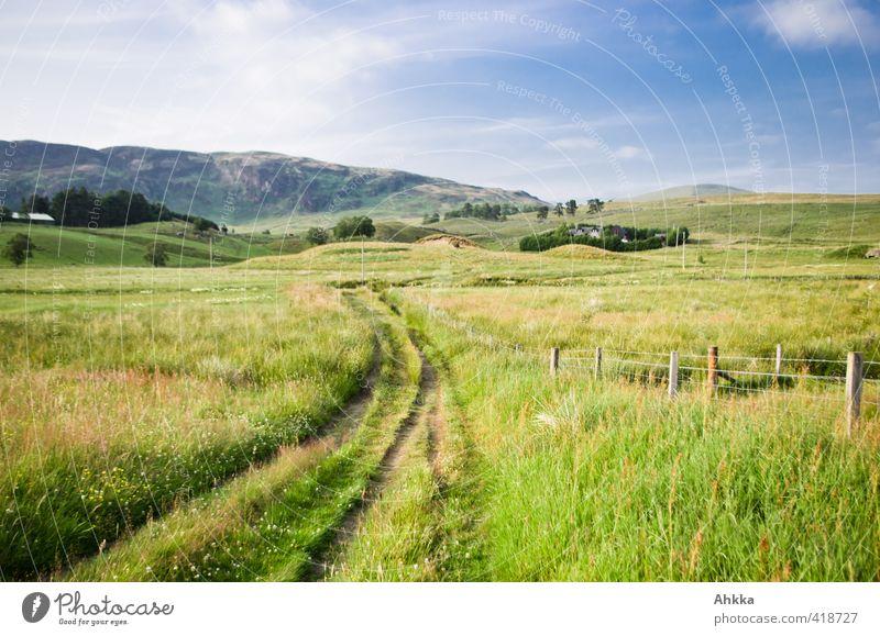 Mein Weg mein Ziel Natur Ferien & Urlaub & Reisen grün Sommer Erholung Einsamkeit Landschaft ruhig Ferne Leben Wege & Pfade Freiheit Glück Horizont Stimmung
