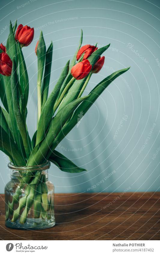 Blumenstrauß aus roten Tulpen Tulpenblüte Blüte Blühend Frühling Farbfoto Innenaufnahme Vase Dekoration & Verzierung Stillleben orange Tag leuchten grün türkis
