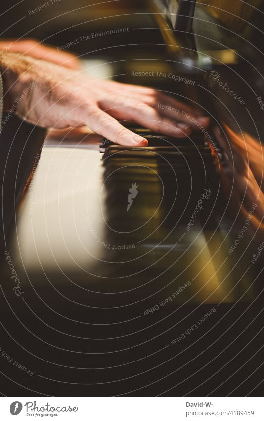 Klavier spielen - Hände auf den Tasten musizieren Musiker Pianist Konzert üben Musikinstrument Finger
