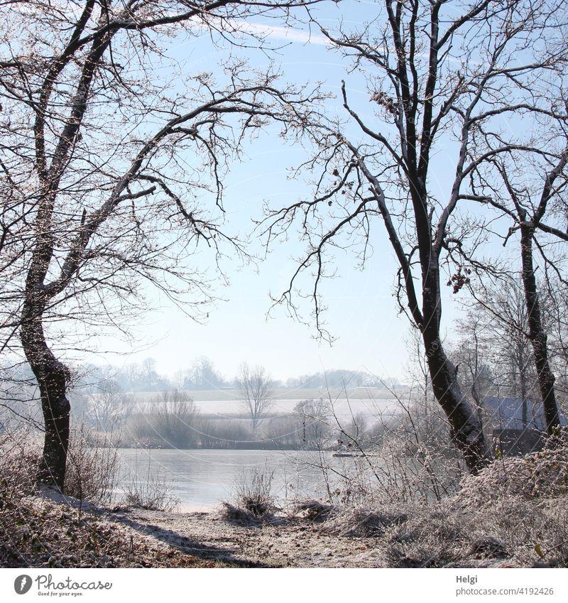 Winterstimmung - zwei Bäume bilden durch ihre Äste ein Tor zum gefrorenen See Baum Moorsee Hücker Moor Wintermorgen Frost Kälte Raureif Natur Außenaufnahme