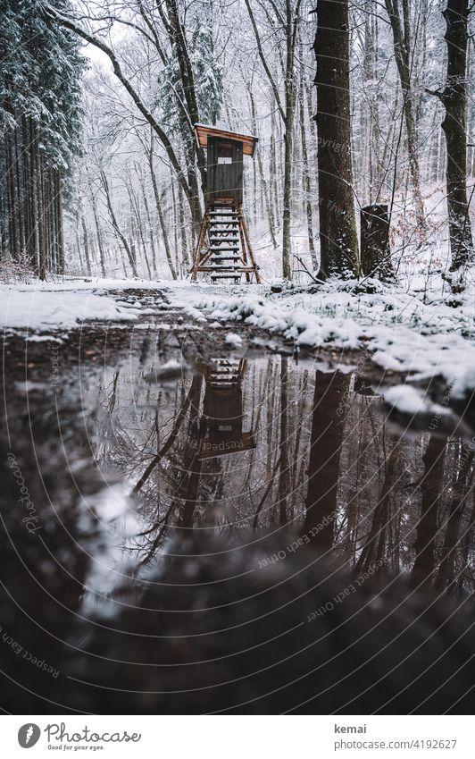 Hochsitz im Wald im Winter Jägerstand Jägerhochsitz Weg Schnee Pfütze Spiegelung kalt braun weiß