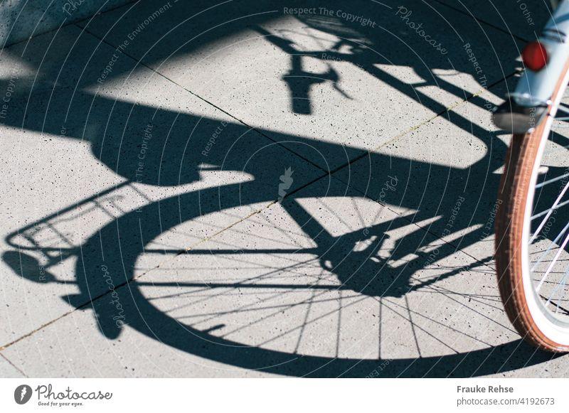Projektion im Sonnenlicht - Teil eines Fahrradhinterrads mit Rückstrahler Mobilität Schatten Schattenwurf rot Sommer Speichen Gepäckträger Lenker Hinterrad