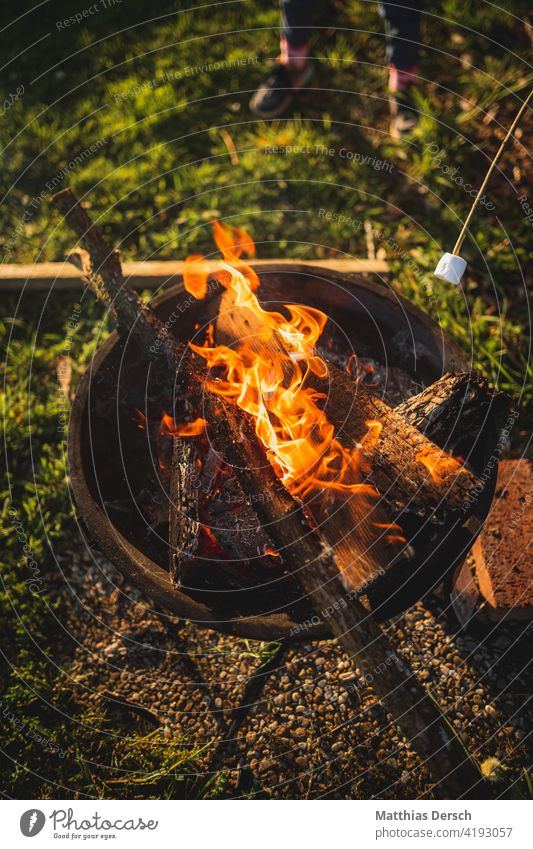 Stockbrot am Lagerfeuer stockbrot Feuer Lagerfeuerstimmung Feuerstelle Feuerschale lagerfeuerromantik Kinder Abenteuer Sommernacht