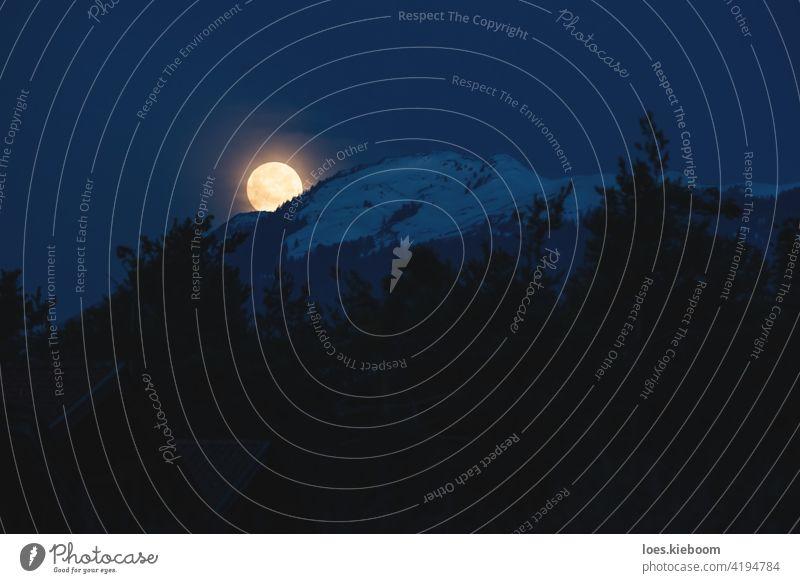 Supermond Einstellung hinter verschneiten alpinen Berg mit immergrünen Wald, Österreich Vollmond Berge u. Gebirge Schnee Baum Silhouette Mond Nacht satt