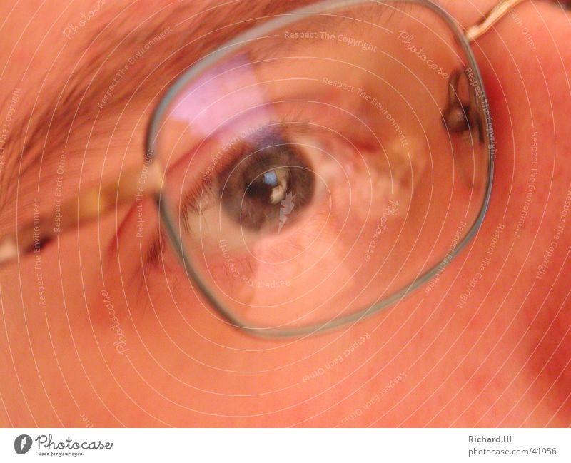 Brille - Eschenbach Mensch Brille