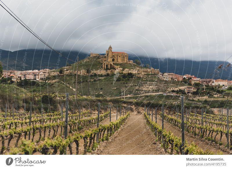 Landschaftsansicht der Weinberge von der Burg von San Vicente de la Sonsierra in La Rioja, Spanien. Ackerbau antik Hintergrund schön blau briones Gebäude