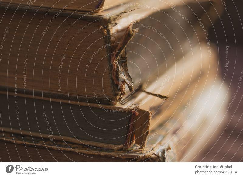 back to the roots | bedrucktes Papier...  Ein Stapel alter zerlesener Bücher Bücherstapel alte Bücher antike Bücher Welttag des Buches Literatur Bildung