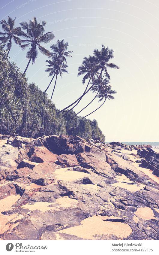 Retro getöntes Bild von einem tropischen Strand an einem sonnigen Sommertag. Paradies Natur retro Meer Sand MEER Felsen altehrwürdig reisen Insel Landschaft