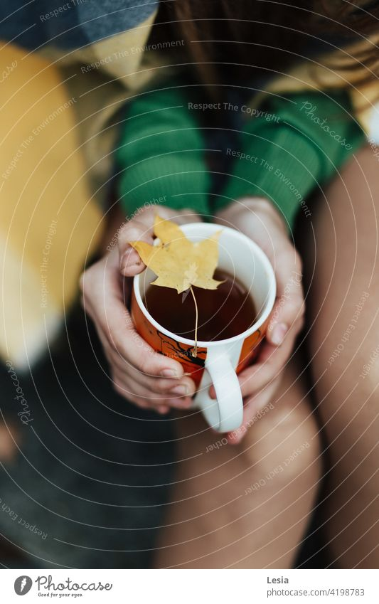 Warmer Tee. Herbst Herbst Heidekraut warmes Getränk heißer Tee Teetasse Herbststimmung Herbstlaub Herbstwetter Herbstfarben Herbstlicht Herbstwind