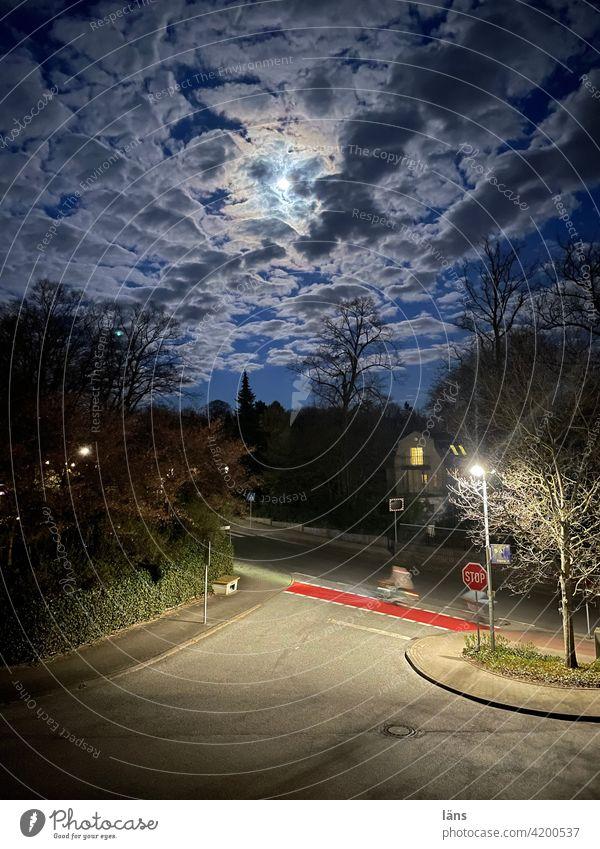 Mondschein Straße Radfahrerin Stopschild Himmel dunkel Wolken Licht Außenaufnahme blau Natur Landschaft Baum Nacht blaue Stunde Verkehrswege Farbfoto