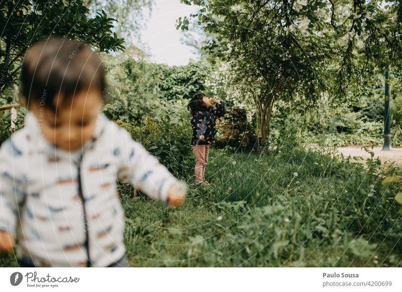 Bruder und Schwester spielen im Freien Geschwister Spielen Familie & Verwandtschaft Zusammensein Kleinkind 2 Junge Kindheit Farbfoto Freundschaft Mensch