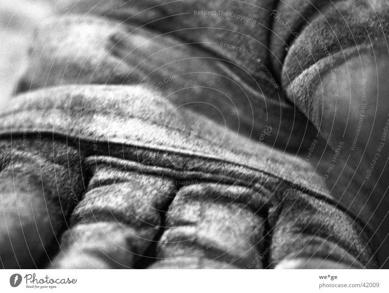 Arbeitshandschuhe Handschuhe Werkzeug Dinge Schwarzweißfoto