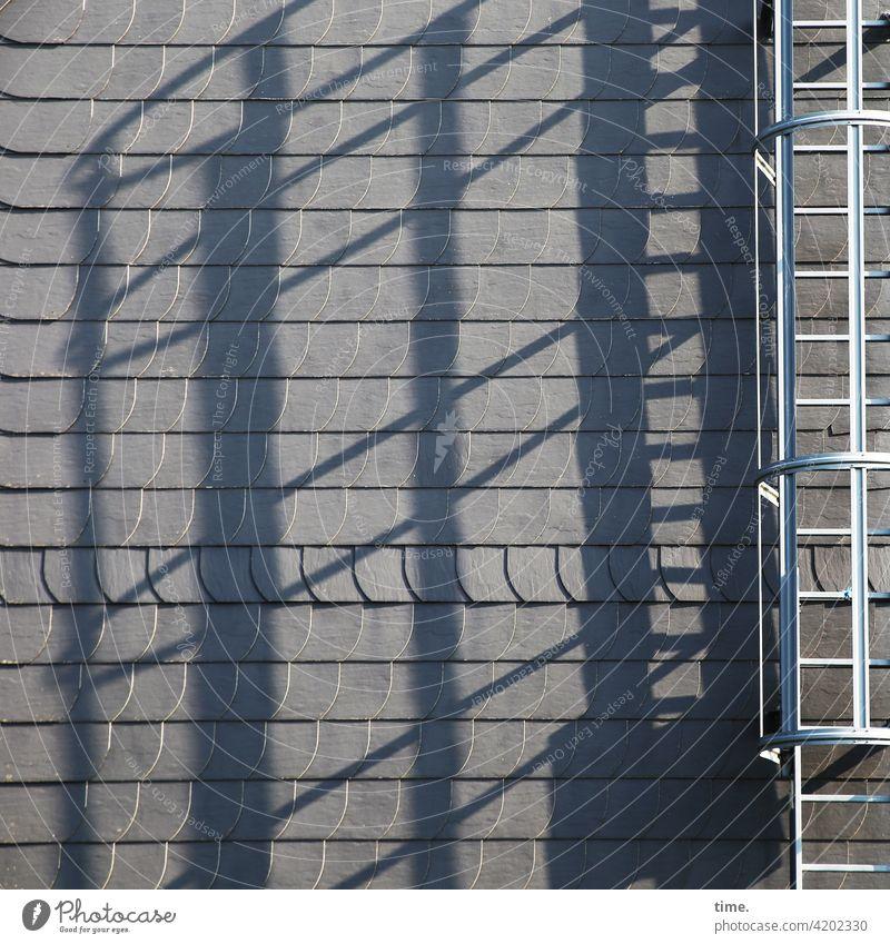 Rettungsdienst dach leiter feuerleiter fluchtweg dachschindeln sonnig schatten silhoeutte metall eisen schiefer schieferplatten linien streifen sicherheit