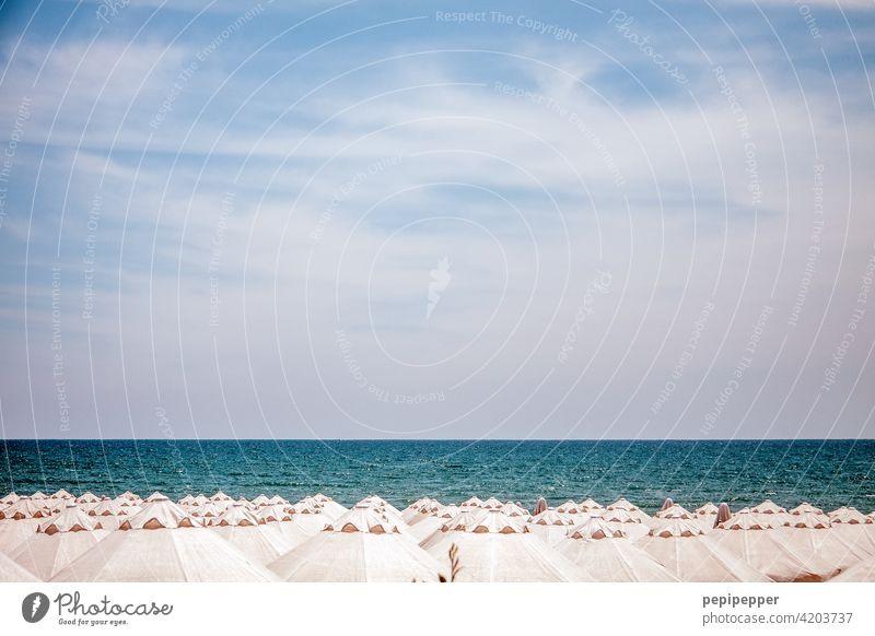 Sonnenschirme und Sonnenliegen am Strand – alle leer Sommer Außenaufnahme Meer Erholung Menschenleer Ferien & Urlaub & Reisen Farbfoto Sand Himmel Küste