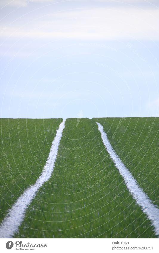 Fahrspuren auf einem Acker laufen am Horizont zusammen Himmel Fluchtpunkt parallel nebeneinander Traktor Dreck Erde Spur fahren Boden Reifen Profil Ackerbau