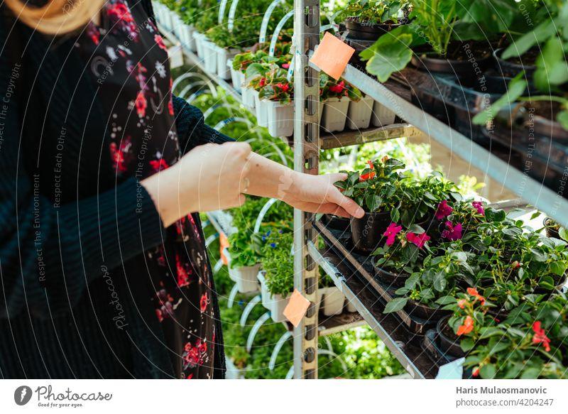 Junge Frau kauft Blumen für den Garten Großaufnahme Erwachsener Ackerbau schön Blüte kaufen Pflege Kaukasier Zentrum heiter Wahl auserwählend wählte Nahaufnahme