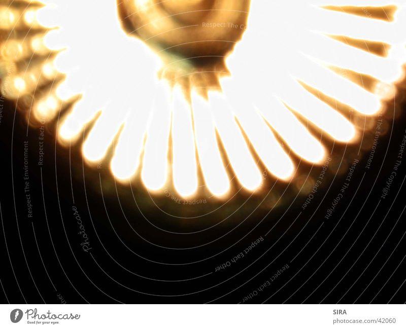 Spot Glühbirne Lampe Elektrisches Gerät Technik & Technologie Halogen
