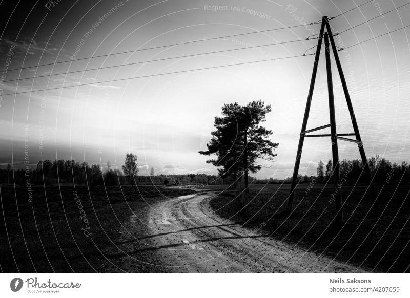 Landstraße durch grüne Weiden, Holzpfosten im Zaun, gelbe Blumen im Gras und Strommasten - Blick in den Frühlingstag Straße Sonnenuntergang Himmel Zug Eisenbahn