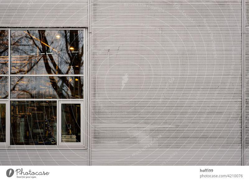reflektierende Fenster einer grauer Wellblechwand Fensterscheibe Metallfassade Wellblechfassade Minimalismus Industrielle Fassade Lager Lagerhalle