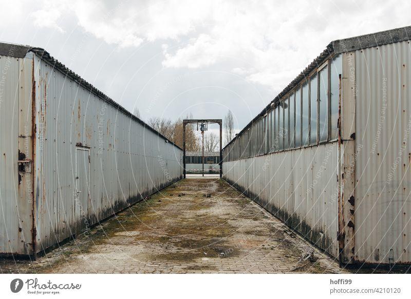zwei alte Lagerhalle mit Spuren von Rost trist wartezone 50ger Jahre Hafen Logistikbereich logistik Halle Schuppen Industrie Gebäude Fassade